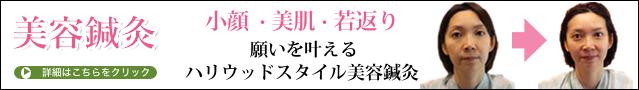 美容鍼ヘッド改01