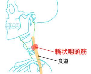 部 異常 頭 症 咽喉 感
