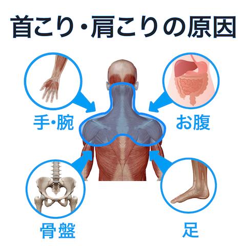 首こり・肩こりの根本原因は4つの箇所にあります。